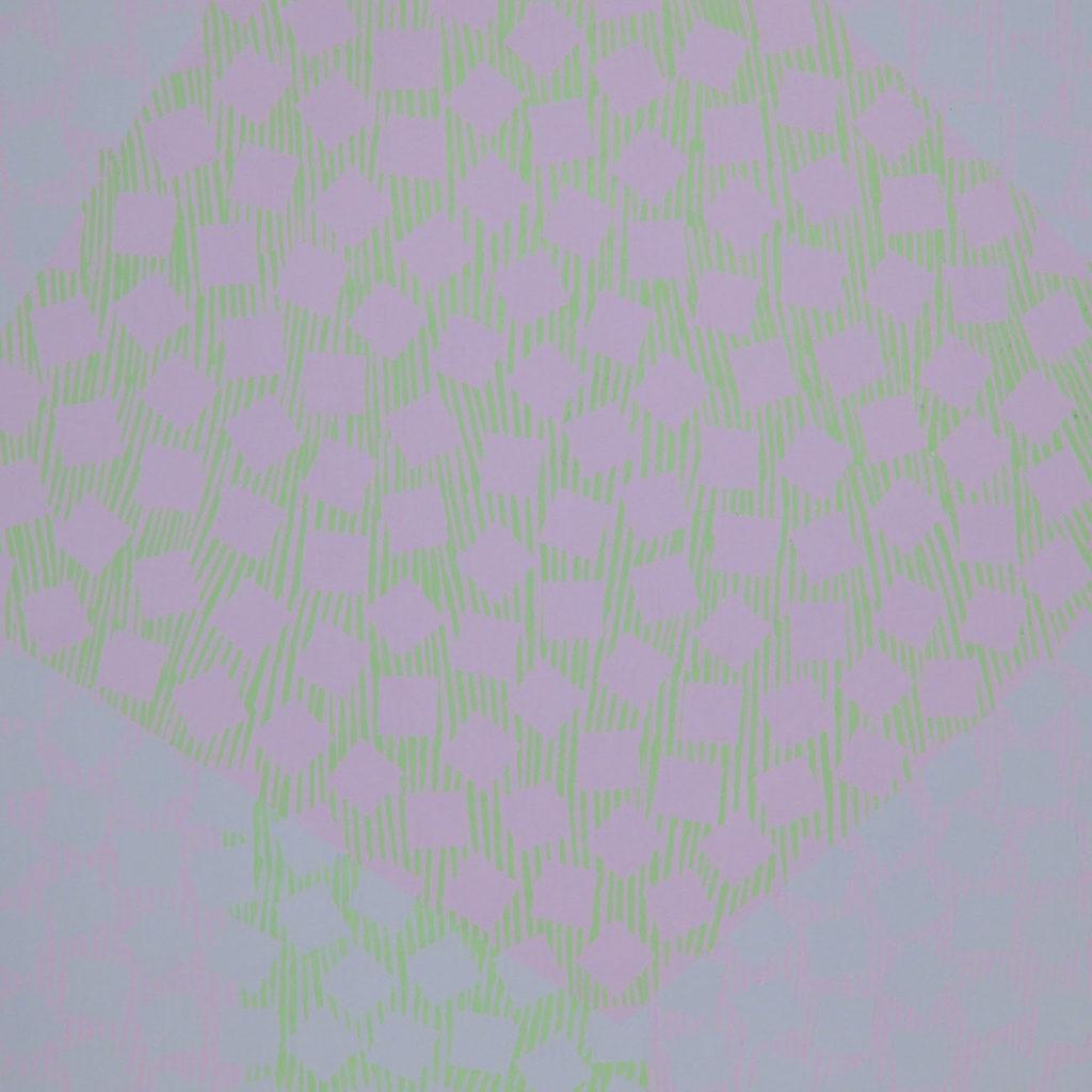 Reflet dans la prunelle d'une libellule